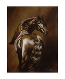 Dark Chocolate Photographic Print by Heather Theurer