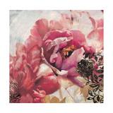 Beautiful Memories 1 Premium Giclee Print by Matina Theodosiou
