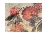 Garden Dreams 1 Premium Giclee Print by Matina Theodosiou