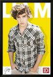 One Direction-Liam-Colour Prints