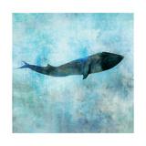 Ocean Whale 1 Premium Giclee Print by Ken Roko