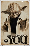 Star Wars Yoda May The Force Mounted Print