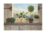 Winery Villa View Premium Giclee Print by Arnie Fisk