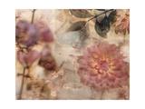Garden Dreams 2 Premium Giclee Print by Matina Theodosiou
