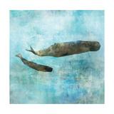 Ocean Whale 2 Giclee-tryk i høj kvalitet af Ken Roko