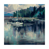 Coastal Shoreline Premium Giclee Print by Brent Heighton