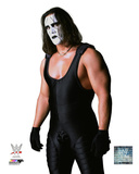 Sting Posed Photo