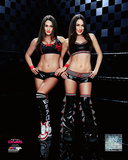 The Bella Twins 2014 Posed Photo