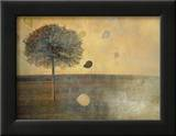 Balloons Tied to Tree Framed Photographic Print by Mia Friedrich