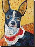 Sitting Pretty Chi-Hua-Hua Stretched Canvas Print