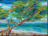 Beach Tree Stretched Canvas Print