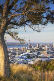 View of Auckland from Mount Eden, Auckland, North Island, New Zealand Photographic Print by Ian Trower