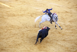 Bullfight, Jerez De La Frontera, Cadiz Province, Andalusia, Spain Photographic Print by Neil Farrin