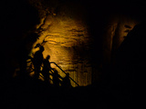 Mammoth Cave National Park, Kentucky, USA Photographic Print by Anna Miller