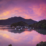 Ngakuta Bay, Queen Charlotte Sound, Marlborough Sounds, South Island, New Zealand Photographic Print by Doug Pearson