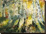Autumn Aspen Stretched Canvas Print