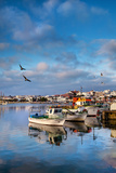 View from Fishing Harbour Towards Old Town, Lagos, Algarve, Portugal Photographic Print by Sabine Lubenow