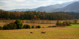 Autumn in Cades Cove, Smoky Mountains National Park, Tennessee, USA Papier Photo par Anna Miller