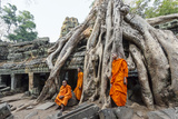 Cambodia, Siem Reap, Angkor Wat Complex. Monks Inside Ta Prohm Temple (Mr) Photographic Print by Matteo Colombo