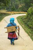 Flower Hmong Woman Walking Along Road, Nr Bac Ha, Nr Sapa, N. Vietnam Fotodruck von Peter Adams