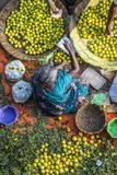 Lemon Seller, K.R. Market, Bangalore (Bengaluru), Karnataka, India Photographic Print by Peter Adams