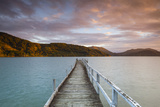 Sunset over Wharf in Idyllic Kenepuru Sound, Marlborough Sounds, South Island, New Zealand Photographic Print by Doug Pearson