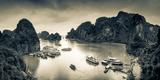 Vietnam, Halong Bay Fotodruck von Michele Falzone