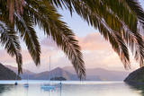 Yachts Anchored on the Idyllic Queen Charlotte Sound, Marlborough Sounds, South Island, New Zealand Photographic Print by Doug Pearson