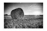 France, Centre Region, Indre-Et-Loire, Sainte Maure De Touraine, Straw Bale in Field Photographic Print by Alan Copson