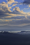 Italy, Tuscany, Siena District, Orcia Valley. Typical Countryside. Photographic Print by Francesco Iacobelli