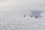Deep Powder Snow, Skiing, Tyrol, Austria Fotografisk trykk av Norbert Eisele-Hein
