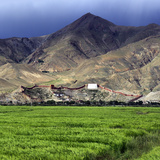 Gyantse Dzong, Gyantse County, Shigatse Prefecture, Tibet, China Fotografie-Druck von Ivan Vdovin