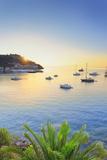 Tuscan Archipelago National Park, Elba Island, Porto Azzurro, Tuscany, Italy Photographic Print by Francesco Iacobelli