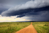 Landscape, Maasai Mara National Reserve, Kenya Fotografie-Druck von Ivan Vdovin
