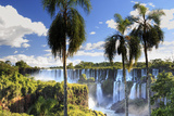 Argentina, Iguazu Falls National Park, (Unesco Site) Photographic Print by Michele Falzone