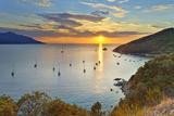 Tuscan Archipelago National Park, Elba Island, Capo D'Enfola, Italy Photographic Print by Francesco Iacobelli