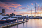 Sky Tower and Viaduct Harbour at Sunset, Auckland, North Island, New Zealand Photographic Print by Ian Trower