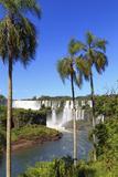 Argentina, Iguazu Falls National Park, (Unesco Site) Fotografiskt tryck av Michele Falzone