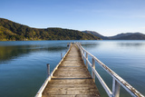 Picturesque Wharf in the Idyllic Kenepuru Sound, Marlborough Sounds, South Island, New Zealand Photographic Print by Doug Pearson