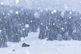 Anne Maenurm - Italy, Veneto, Dolomites, Winter in Sappada - Fotografik Baskı