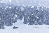 Italy, Veneto, Dolomites, Winter in Sappada Photographic Print by Anne Maenurm
