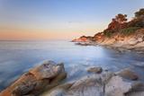 Tuscany, Tuscan Archipelago National Park, Elba Island, Sant'Andrea Cape, Italy Photographic Print by Francesco Iacobelli