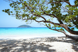 Thailand, Similan Islands. Tropical Beach on Island N.4 Photographic Print by Matteo Colombo
