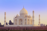 India, Uttar Pradesh, Agra, Taj Mahal in Rosy Dawn Light Photographic Print by Alex Robinson