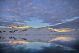 Alpenglow on Glaciated Coastal Mountains at Sunrise, Reflected in the Sea Photographic Print by Ira Meyer