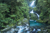Mackay Falls on Milford Track in Fiordland National Park Photographic Print by Michael Melford