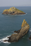 Rocky Islets Off Rumps Point, Along the Atlantic Coast of Cornwall, Near Padstow Photographic Print by Nigel Hicks