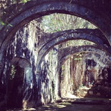A Row of Arches and Dappled Sunlight at Hacienda Uayamon Photographic Print by Andrew Evans