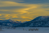 Lenticular Clouds Glow in a Sunset over the Lamar Valley Photographic Print by Gordon Wiltsie