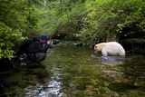 A Photographer Shooting a Kermode or Spirit Bear in a Creek Photographic Print by Jed Weingarten